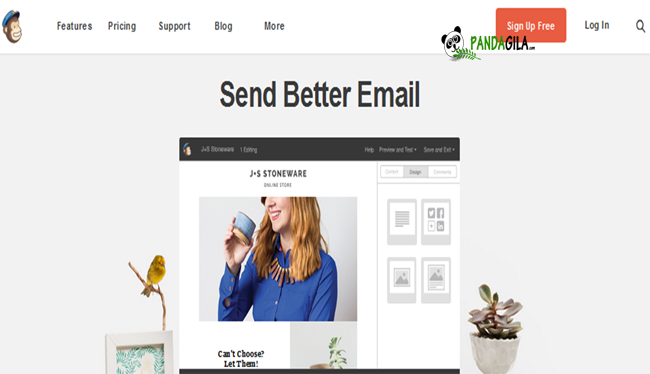 email marketing, autoresponder, mailchimp