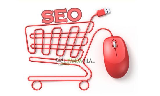 SEO,ecommerce,otpimasi,toko online,website