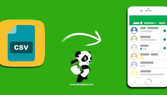 Cara Mudah Import Ribuan Kontak dari File Excel ke Android