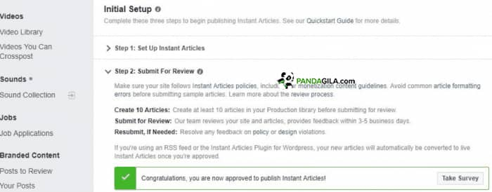 Submit Review Instant Article
