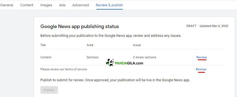 Step review & publish Google News