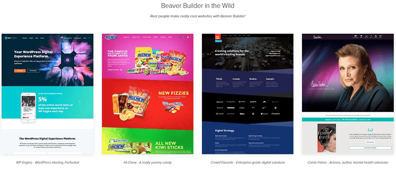 Beaver Builder, plugin landing page