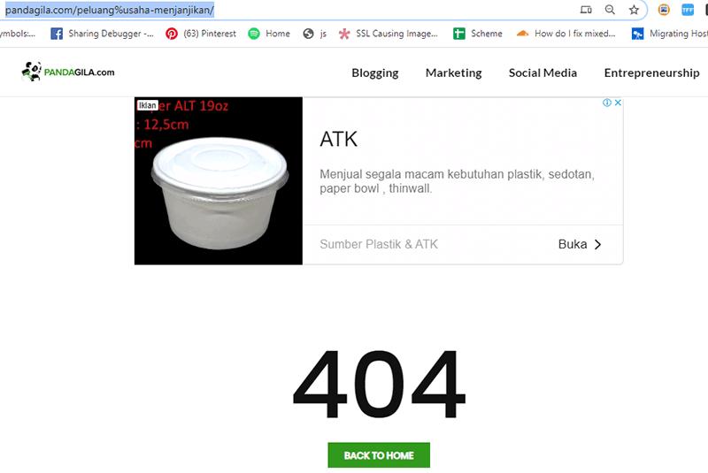 Peringatan Error 404 dan Cara Mengatasinya