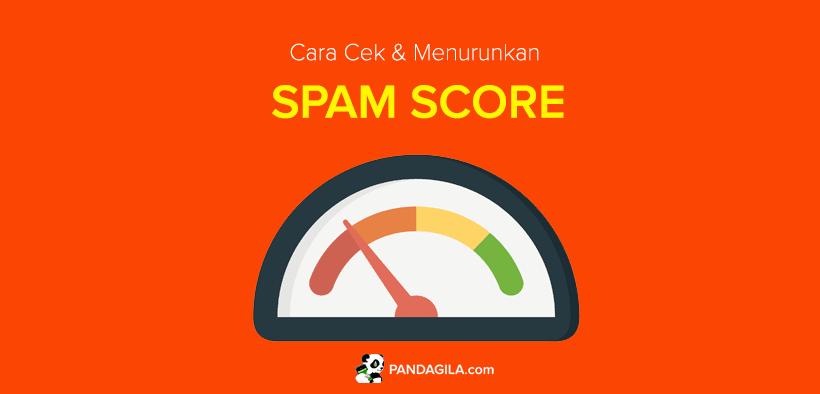 Cara Cek dan Menurunkan Spam Score Website