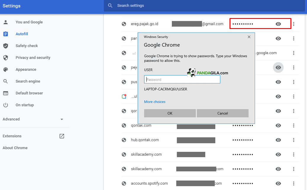Cara melihat password di Chrome PC