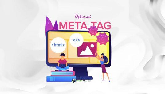 Apa itu Meta Tag SEO