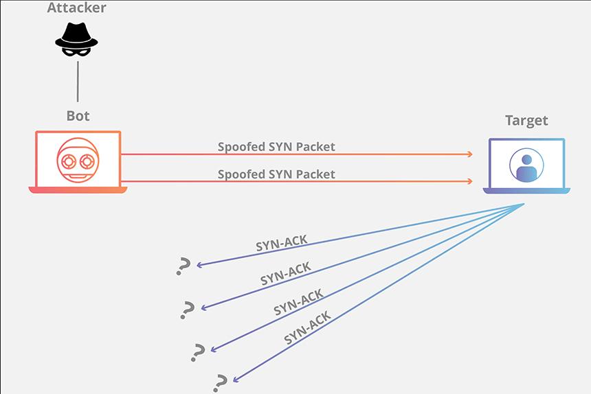 Infografis DDoS Protokol
