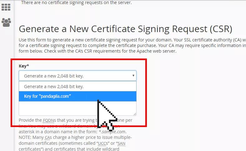 Cara Generate CSR SSL Certificate