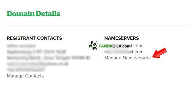 Domain detail untuk manage nameserver domain