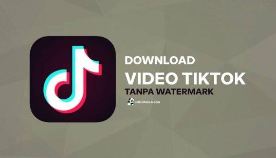 Cara download audio sounds dan video TikTok tanpa watermark